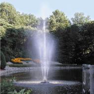 Scott Aerator Twirling Waters Fountain 1/2 HP 115V
