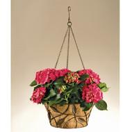 Deer Park Ironworks Vine & Leaf Hanging Basket w/ Coco Liner