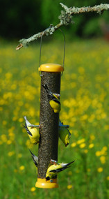 Droll Yankees Bird Lovers Bottoms Up Finch Feeder 15""