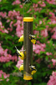 Droll Yankees Bottoms Up Finch Feeder 16""