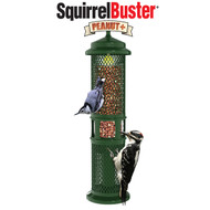 Brome Squirrel Buster Peanut + Bird Feeder Squirrel Proof Bird Feeder