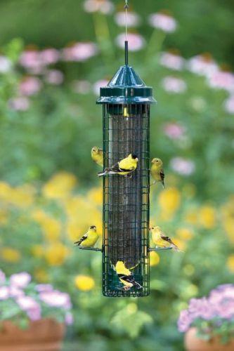 Brome Squirrel Buster Finch Wild Bird Feeder 1016