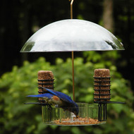 Birds Choice Supper Dome w/ Removable Suet Holders NP3005