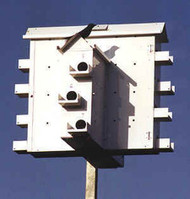 Lone Star Alamo Purple Martin Bird House - Round Doors