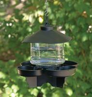 First Nature Clear Lantern Bird Bath Waterer FN3039