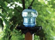 First Nature Bird Bath & Waterer FN3004