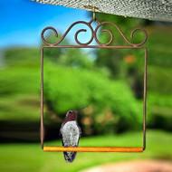 POP'S Original Hummingbird Swing in Brown POPSWINGBR
