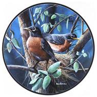 Glassmasters Robins