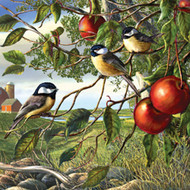 SunsOut Puzzle Chickadees and Apples 500 pcs
