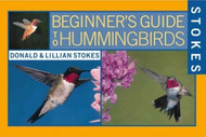 Stokes Beginners Guide to Hummingbirds