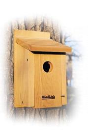 Woodlink Bluebird House