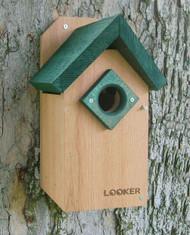 Songbird Essentials Bluebird Green Roof