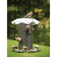 BIRDS CHOICE 3 QT. CLEAR-SUNFLOWER BIRD FEEDER