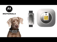 Motorola Wireless Dog Fence for Home and Travel - WIRELESSFENCE25 On Sale Free Shipping