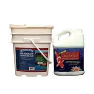BioSafe GreenClean Algaecide 50lb PLUS GreenClean Xtreme Beneficial Bacteria