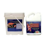 BioSafe GreenClean Algaecide 8lb PLUS GreenClean Xtreme Beneficial Bacteria