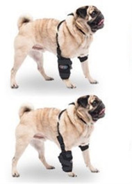 Caldera International Small Universal Pet Therapy Wrap - Carpal/Elbow with Therapy Gel PET105