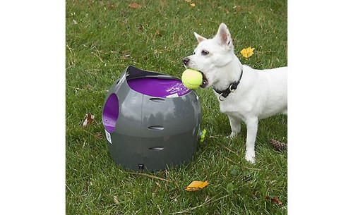 PetSafe Automatic Ball Launcher PTY00-14665 Dog Ball Launcher Dog Toy