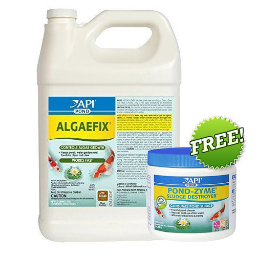 API PondCare AlgaeFix 1 Gallon Pond Algae Control 169C Plus FREE 8 oz. Pond Zyme 146 (AP169C + 146)