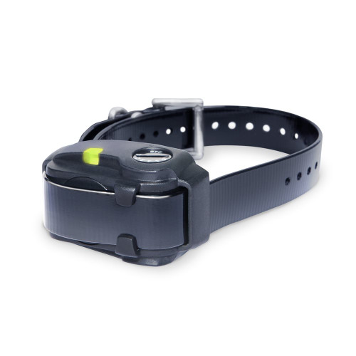 Dogtra Small Dog No Bark Dog Collar Black for dogs 10 lbs. and up YS200