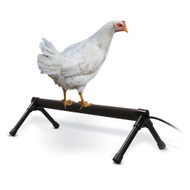 K & H Thermo-Chicken Perch HEATED 36 inch 60W KH2111