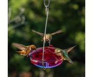 Droll Yankee Ruby Sipper Hummingbird Feeder Lavender DYRS3HL