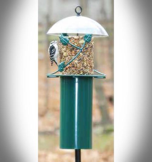 Birds Choice Pole Mounted Seed Cylinder Bird Feeder With Squirrel Baffle SCFPOLE