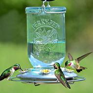 Perky Pet Blue Glass Mason Jar Hummingbird Feeder 785