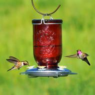 Perky Pet Red Glass Mason Jar Hummingbird Feeder 786
