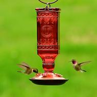 Perky Pet Red Square Antique Bottle Glass Mason Jar Hummingbird Feeder 8116-2