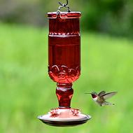 Perky Pet Red Antique Glass Bottle Hummingbird Feeder 8119-2