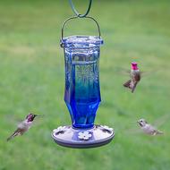 Perky Pet Sapphire Starburst Vintage Glass Hummingbird Feeder 8129-2