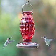 Perky Pet Red Hobnail Vintage Glass Hummingbird Feeder 8130-2