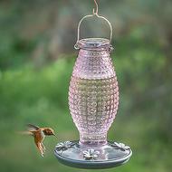 Perky Pet Cranberry Hobnail Vintage Glass Hummingbird Feeder 8130-2