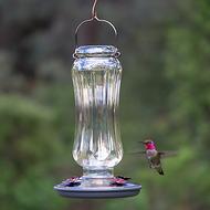 Perky Pet Starglow Vintage Glass Hummingbird Feeder 8132-2