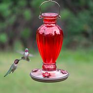 Perky Pet Red Daisy Vase Vintage Glass Hummingbird Feeder 8133-2