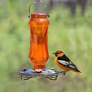 Perky Pet Orange Carnival Vintage Glass Oriole Bird Feeder 8135-2