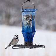 Perky Pet Sapphire Starburst Vintage Glass Wild Bird Feeder 8138-2