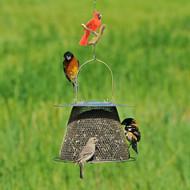 Perky Pet 82 Cardinal Decorative Bird Feeder or Plant Hanging Hook