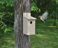 Songbird Essentials Economy Bluebird Birdhouse SETC103