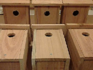 6 PACK Cedar Bluebird Bird house