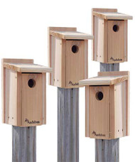 4 PACK Woodlink Audubon Cedar Bluebird House NABB Value Pack