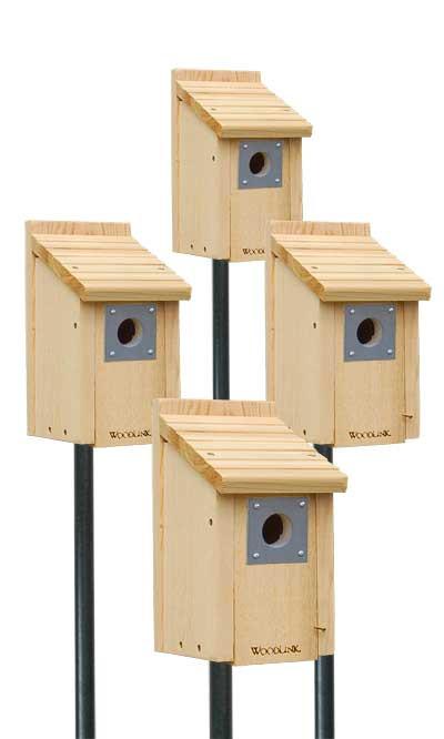 Woodlink Cedar Bluebird House and Erva Pole Package Kit 4 Pack