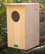 Coveside Conservation Barred Owl House Unassembled COV-10190-U