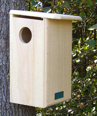 Coveside Conservation Squirrel House COV-20000
