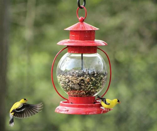 PineBush Red Lantern Seed Bird Feeder PINE10055  PineBush Red Lantern Wild Bird Feeder PINE10055