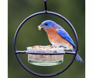 Couronne Co Clear Sphere Hanger Bird Feeder COURM045200