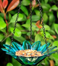 Couronne Co Aqua Hanging Daisy Birdbath and Bird Feeder COURM34920009