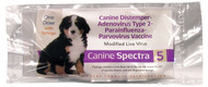 Durvet - Pet            D - Spectra 5 Dog Vaccine With Syringe