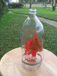 Best-1 Replacement 32 oz. Bottle for Hummingbird Feeder BESTR32